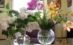 tulipán virágcsokor és dekoráció tavaszi virág orgona
