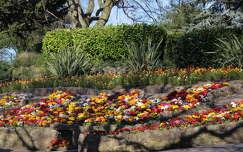 tavasz kertek és parkok
