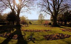 fény tavasz kertek és parkok