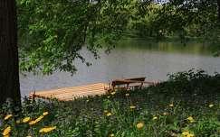 pad tavasz tó stég és móló