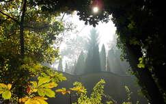 kerítés fény