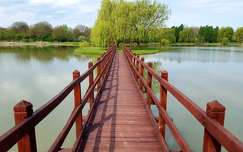 Bicsérd, Híd, Tó