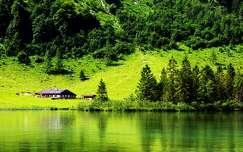 ház tó tavasz