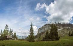 erdély kárpátok hegy románia tavasz