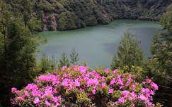 azori-szigetek portugália rododendron tó