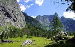 alpok hegy tavasz
