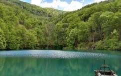 magyarország erdő tó tavasz