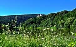 várak és kastélyok vadvirág tó tavasz