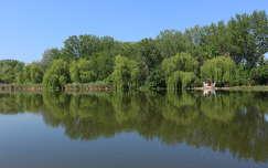 ház tükröződés tó tavasz