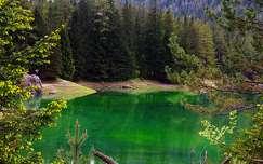 ausztria alpok erdő tó