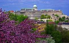 várak és kastélyok budai vár budapest tavasz magyarország