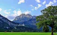 nyár várak és kastélyok neuschwanstein kastély alpok hegy németország