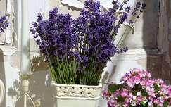 nyár vadvirág levendula nyári virág virágcsokor és dekoráció