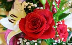 virágcsokor és dekoráció rózsa