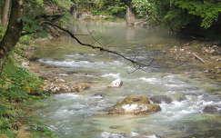 Vintgar szurdok,Szlovénia