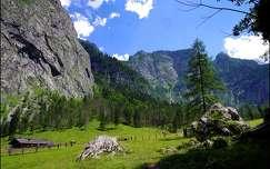 alpok ausztria nyár hegy kövek és sziklák