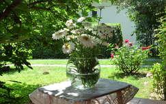 margaréta nyári virág virágcsokor és dekoráció