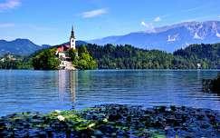 tó bledi-tó alpok nyár templom szlovénia hegy