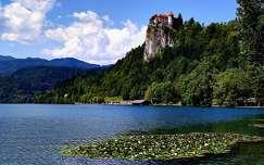 alpok szlovénia várak és kastélyok bledi-tó nyár