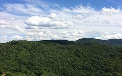 Hegy, erdő, felhők