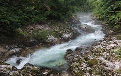 Vintgar szoros,Szlovénia