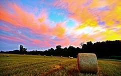 gabonaföld nyár felhő naplemente