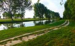 A zöld tó.