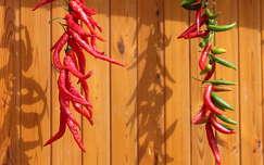 árnyék fűszerek paprika ősz