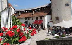 Bledi vár udvara,Szlovénia