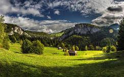 hegy kárpátok erdély románia faház