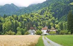 út gabonaföld hegy