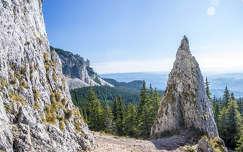 erdő kárpátok hegy románia kövek és sziklák erdély