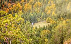 ősz erdő erdély ház románia kárpátok
