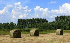 Szalmabálák a legelőn