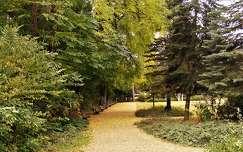 út pad kertek és parkok
