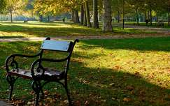 ősz, Erzsébet liget, Balatonalmádi, magyarország