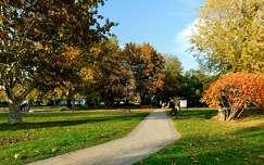 ősz, Balatonalmádi, Szent István Park, magyarország