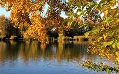 tó ősz