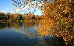 tükröződés tó ősz