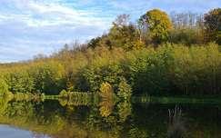tükröződés ősz