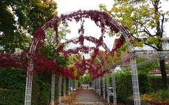 kertek és parkok ősz út