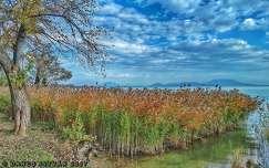 Balatongyörök, Soós- öböl