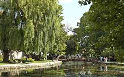 híd kertek és parkok fa
