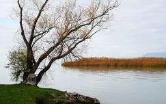 A Balaton őszülőben