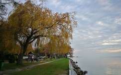 Balaton part
