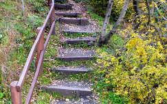 ősz, korlát, lépcső, magyarország