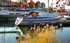 Balatonszemes Kikötő