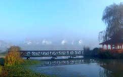 ősz, pára, híd, magyarország