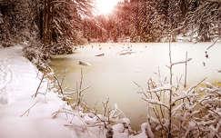 tél tó erdély kárpátok fény erdő románia
