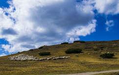 Románia, Bucsecs hegység